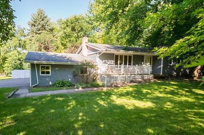 Burnsville Single Family Home For Sale: 13101 Thomas Avenue S