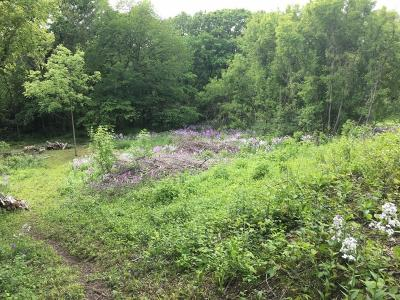 Rochester Residential Lots & Land For Sale: Xxxx East River Road NE
