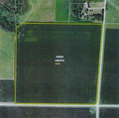 Sibley County Residential Lots & Land For Sale: Xxx 226th Street