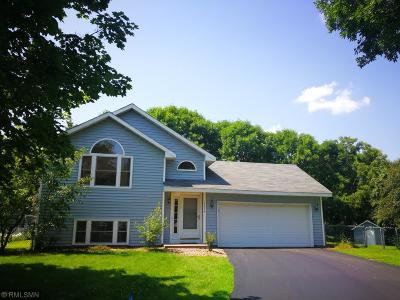 Shoreview Single Family Home For Sale: 1379 Rice Creek Trail Court
