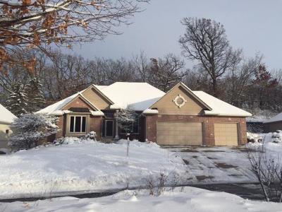 Burnsville Single Family Home For Sale: 14713 White Oak Drive
