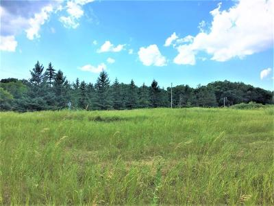 Sauk Centre MN Residential Lots & Land For Sale: $150,000