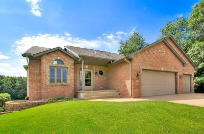 Ham Lake Single Family Home For Sale: 3138 144th Avenue NE