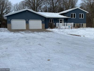 Palmer Twp MN Single Family Home For Sale: $319,000