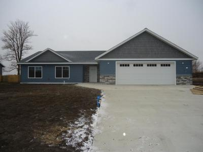 Willmar Single Family Home For Sale: 600 36th Street NW