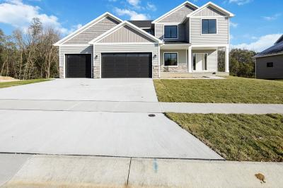 Rochester, Rochester Twp Single Family Home For Sale: 771 Delrose Lane SW