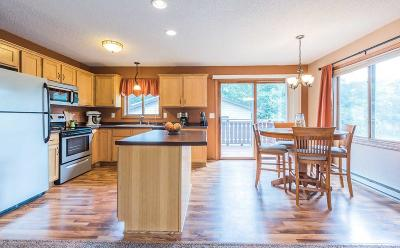 Sauk Rapids Single Family Home For Sale: 1009 Benedict Drive