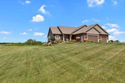 River Falls Single Family Home For Sale: W9422 739th Avenue