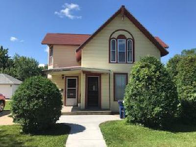 Lake City Single Family Home For Sale: 206 S Prairie Street