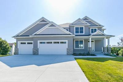 Rochester, Rochester Twp Single Family Home For Sale: 1680 Century Ridge Lane NE