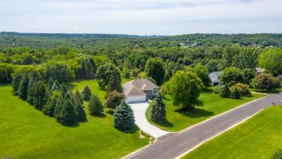Rochester, Rochester Twp Single Family Home For Sale: 364 73rd Street NW
