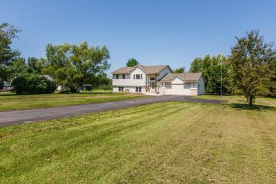 Pine City Single Family Home For Sale: 11371 Lakeview Heights Road