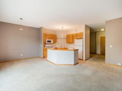 Saint Louis Park Condo/Townhouse For Sale: 3000 Raleigh Avenue #205