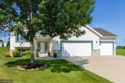 Rochester, Rochester Twp Single Family Home For Sale: 2570 Boulder Ridge Lane NW