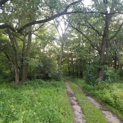 Ramsey Residential Lots & Land For Sale: Tbd 173rd Ave