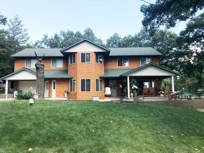 Kandiyohi County Single Family Home For Sale: 21712 141st Street NE