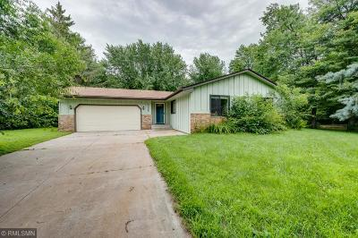 Ham Lake Single Family Home For Sale: 17045 Chisholm Street NE