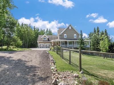 Saginaw Single Family Home For Sale: 6711 McArthur Road