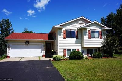 Menomonie Single Family Home For Sale: E5653 695th Avenue