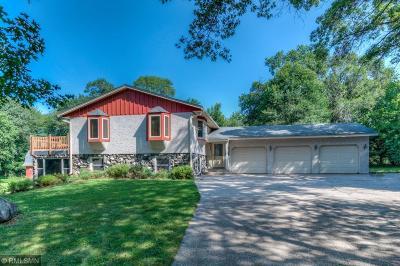 Ham Lake Single Family Home For Sale: 225 178th Avenue NE