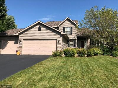 Savage Single Family Home For Sale: 14079 Ridge Point Court