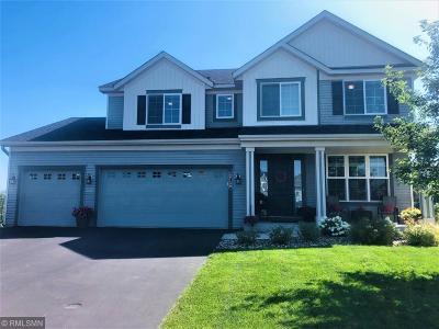 Forest Lake Single Family Home For Sale: 20130 Fern Glen Court N