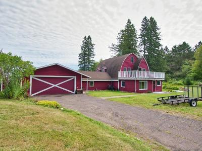 Duluth Single Family Home For Sale: 118 Howard Gnesen Road