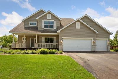 Minnetrista Single Family Home For Sale: 9391 Gander Lane