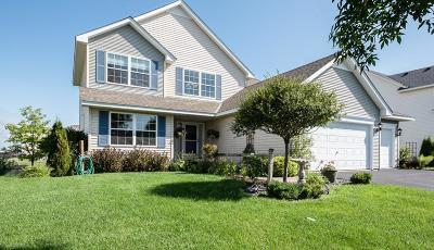 Otsego Single Family Home For Sale: 12048 67th Street NE