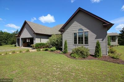 North Branch MN Single Family Home For Sale: $439,900