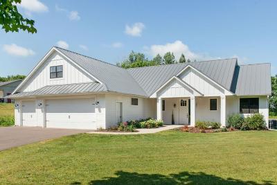 River Falls Single Family Home For Sale: W10320 880th Avenue