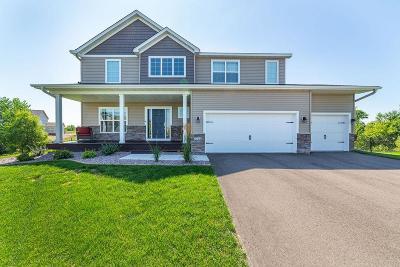Otsego Single Family Home For Sale: 7722 Mackenzie Avenue NE
