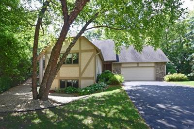 Apple Valley Single Family Home For Sale: 13980 Pennock Avenue