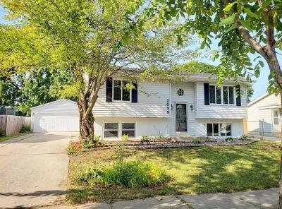 Olmsted County Single Family Home For Sale: 2059 44th Street NW