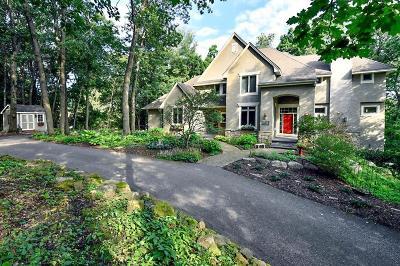 Minnetonka Single Family Home For Sale: 4266 Manor Court Road