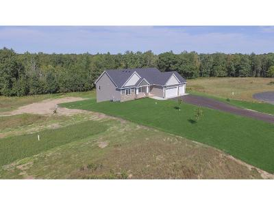 Saint Francis Single Family Home For Sale: 5311 242nd Avenue NE