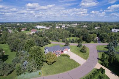 Ham Lake Single Family Home For Sale: 1125 141st Lane NE