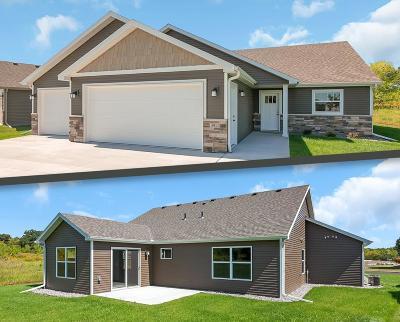 Saint Cloud Single Family Home For Sale: 3951 21st Avenue S