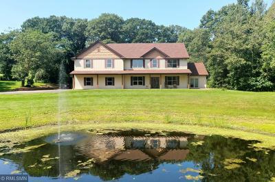 Ham Lake Single Family Home For Sale: 14814 Durant Street NE