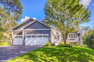Ham Lake Single Family Home For Sale: 3527 133rd Lane NE