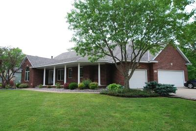 Coon Rapids Single Family Home For Sale: 9736 Vale Street NW