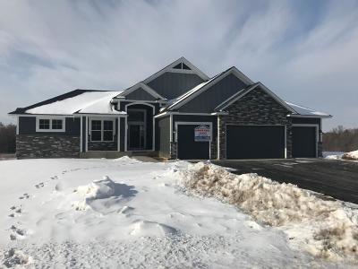 Andover Single Family Home For Sale: 16786 Dakota Street NW