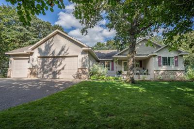 Spicer Single Family Home For Sale: 15785 83rd Street NE