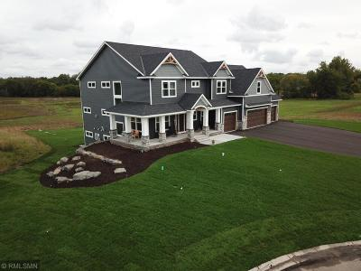 Ham Lake Single Family Home For Sale: 16459 Kiska Street NE