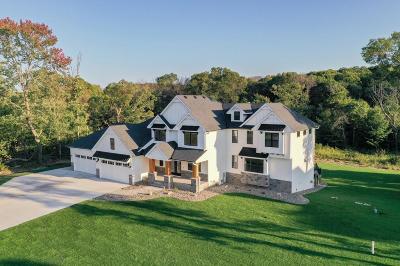 Ham Lake Single Family Home For Sale: 4718 141st Lane NE