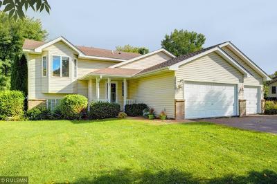 Forest Lake Single Family Home For Sale: 20860 Georgia Avenue N