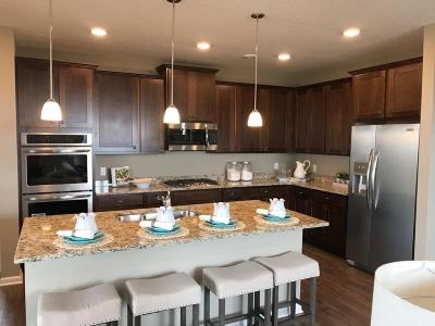 Woodbury Single Family Home For Sale: 4797 Copper Circle