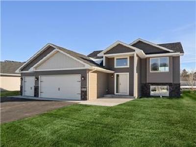 Rush City Single Family Home For Sale: 460 Bryant Street E