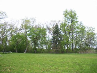 Spring Valley Residential Lots & Land For Sale: 823 Broadway Avenue N
