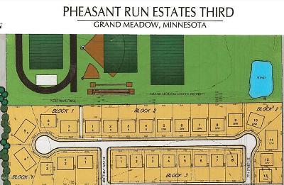 Grand Meadow Residential Lots & Land For Sale: Tbd Glynn Avenue SE